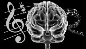 music notes interacting with the brain